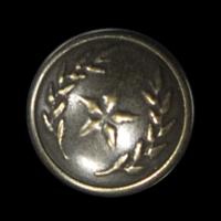Altmessingfarbene Metallknöpfe mit Stern