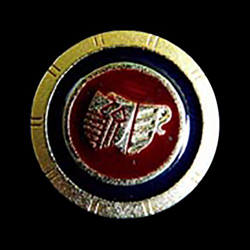 Schöne Blazerknöpfe tiefblau/rot/gold