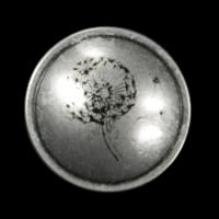 Altsilberfb. Metallknöpfe mit Pusteblume
