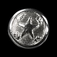 Silberfarbener Sternknopf
