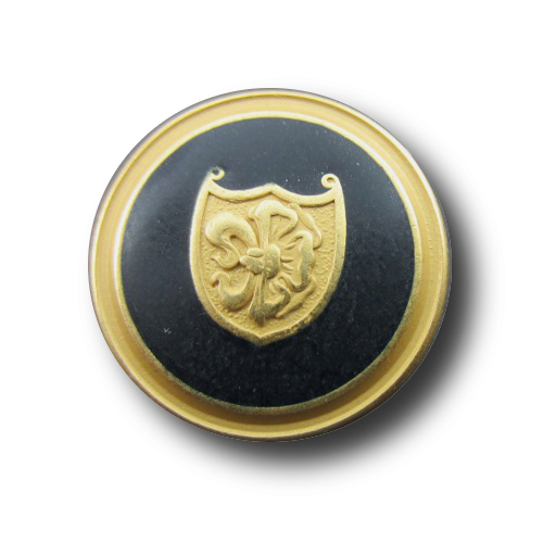 Schwarz-goldene Wappenknöpfe mit Fanatsiemuster