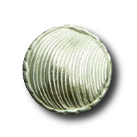 Ausgefallener strukturierter Knopf in Muschel Optik