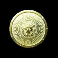 Knopf mit Löwenkopf
